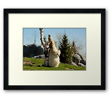 Scratch That Itch! Framed Print
