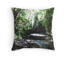 Franklin Creek in the Forest Throw Pillow