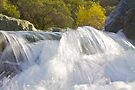 Yuba Rapids by John Butler