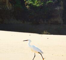 Bird on the beach Sticker