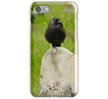 The Ravens Eye iPhone Case/Skin