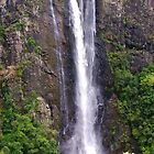 Ellenborough Falls by Penny Smith