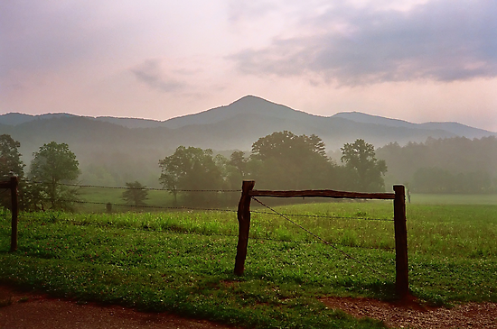 Early Morning - Cades Cove, Tennessee by Glenn Cecero