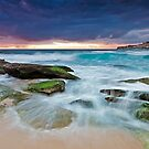 Tamarama's Escape by Mark  Lucey