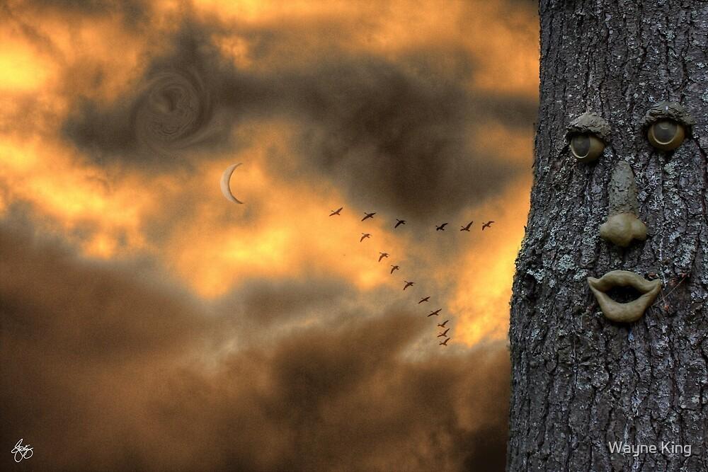 All Hallows Sky by Wayne King