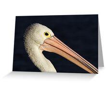 Pelican at Lakes Entrance Greeting Card