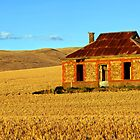 Abandoned Mid North Homestead by Bill  Robinson