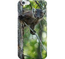 2015-08 Pine Marten iPhone Case/Skin