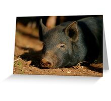 Perfect Piglet XXI Greeting Card