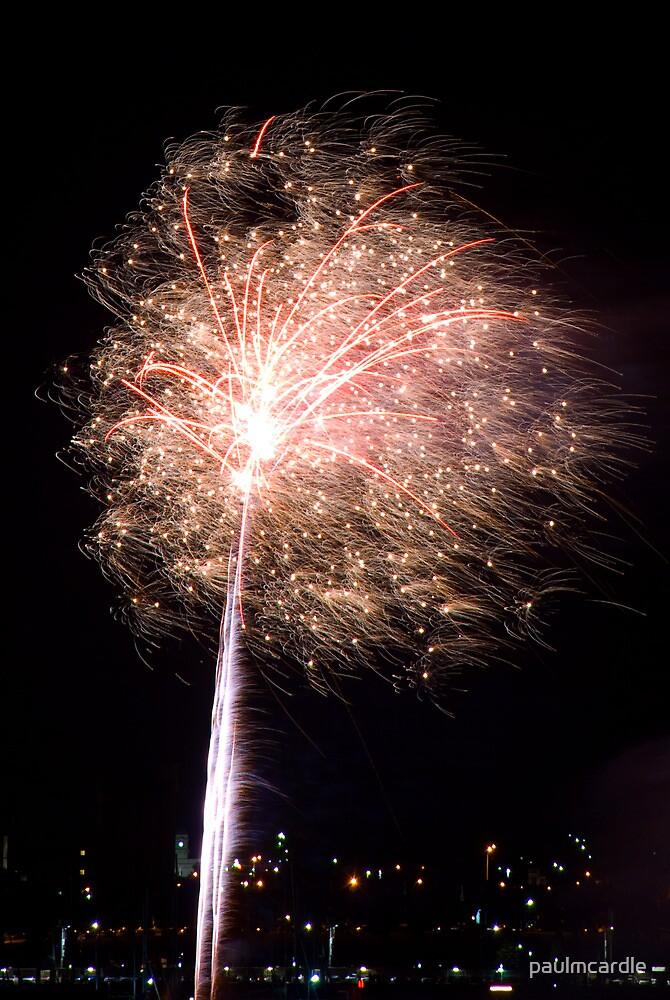 Fireworks Dandelion by paulmcardle