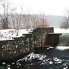 Davidson Mill Pond in Winter by Debra Fedchin