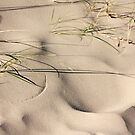 The wind is covering our tracks by Britta Döll