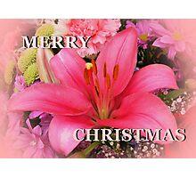 Pink for Christmas Photographic Print