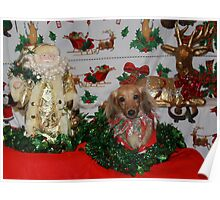 Cute dog with Father Christmas Poster