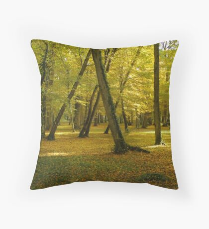 Autumn in the forest of Chenonceau Throw Pillow