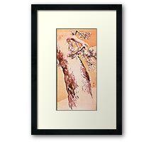 pine tree in snow Framed Print