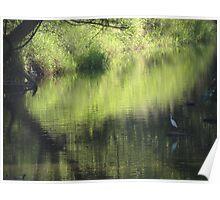 Riverscape with birds - Lado del rio con aves Poster