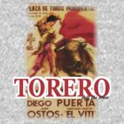 Torero by marting04