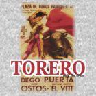 Torero by marting04