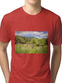 Lupines in Spring Tri-blend T-Shirt