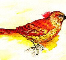 rainbow sparrow by ildiko