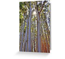 80 Feet Tall  Greeting Card