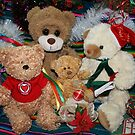 Holiday Cheer from the Ted E. Bear Family by aussiebushstick
