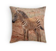 Stripey Infant Throw Pillow