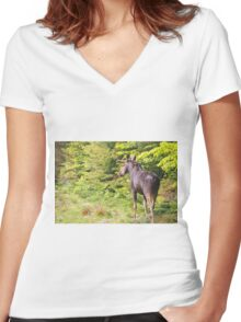 Bull Moose in Maine Women's Fitted V-Neck T-Shirt