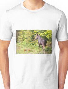 Bull Moose in Maine Unisex T-Shirt