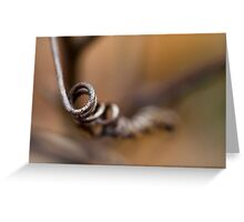 Spiral Twig Greeting Card