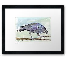 Crows are messengers - Coco Framed Print