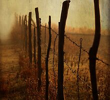 Crude Fence by kristijohnson