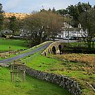 Two Bridges Inn, Dartmoor, Devon, UK by buttonpresser