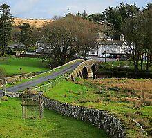 Two Bridges Inn, Dartmoor, Devon, UK by buttonpresser