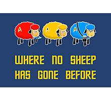 Where no Sheep Has Gone Before Photographic Print