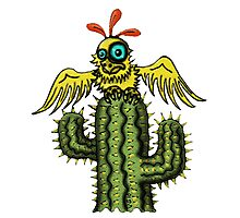 Wrong Landing funny bird on cactus cartoon art Photographic Print
