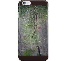 Thou visitest the earth and waterest it iPhone Case/Skin