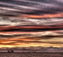 Colorado Sunset Paint Brush by Greg Summers