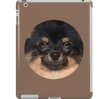 Pomeranian Cute iPad Case/Skin