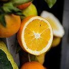 Sicilian orange by Peppedam