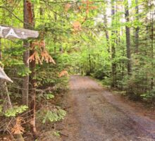 Rural Path through the woods Sticker