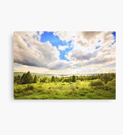 Sunny Lakeside Landscape Canvas Print