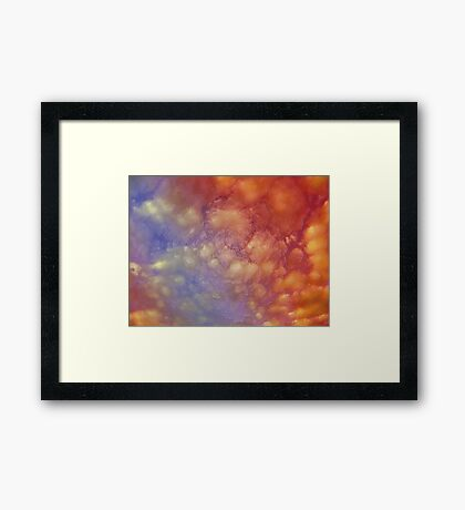 Brightness in a dull day ... Framed Print