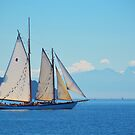 Come Sail Away... by Lisa Baumeler