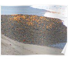 The ocean brought some gravel - El mar aportó la grava, Puerto Vallarta, Mexico Poster