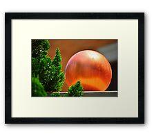 Orange Ball Framed Print