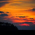 Sunset on Bayou Drive by joevoz