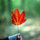 Girl holding Red Autumn Leaf by ieatstars