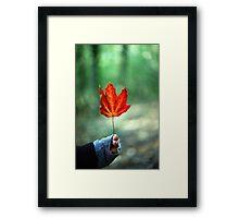 Girl holding Red Autumn Leaf Framed Print